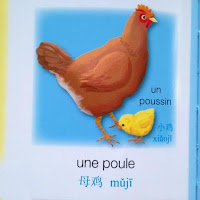 L'imagerie Français Chinois - Editions FLEURUS