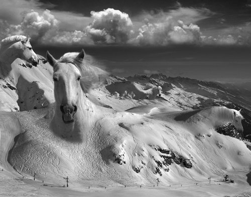 05-Icy-Studs-Swiss-Photographer-Photo-Montage-Surreal-Thomas-Barbèy-Designer-Recording-Artist-Lyricist-Fashion