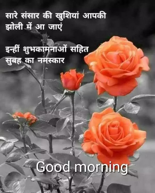 beautiful good morning images in hindi