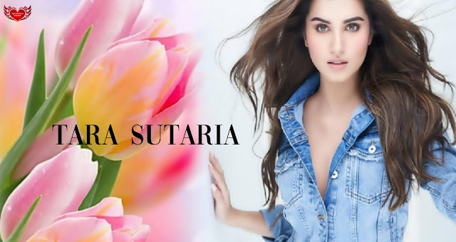 Tara Sutaria 4K HD Wallpapers Bollywood Stars Celebrity Images in Bikini