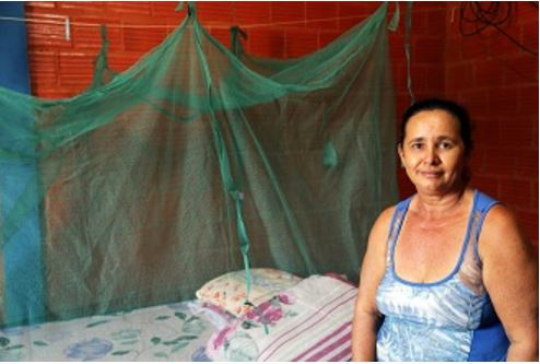Prevenção contra Malária: OMS convoca países a salvarem vidas pela prevenção
