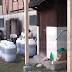 Najbolja rakija u Bosni i Hercegovini proizvodi se u Lukavcu
