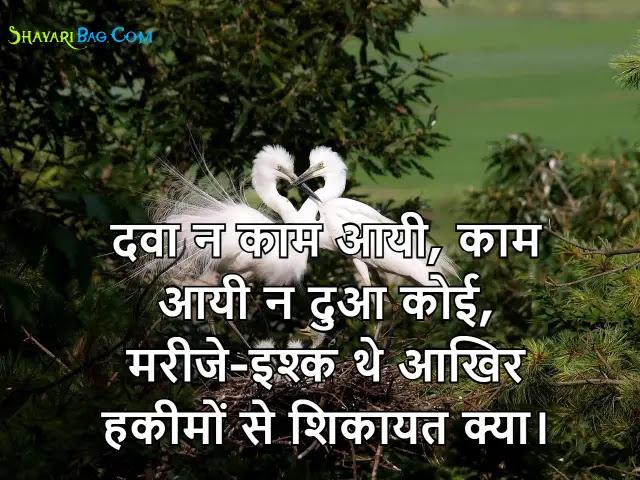 Status on Ishq Shayari in Hindi