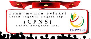 Penerimaan CPNS Terbaru Badan Nasional Penempatan Perlindungan TKI