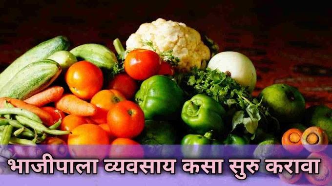 Fruit and vegetable retail business plan in india [ भाजीपाला व्यवसाय कसा सुरू करावा ]