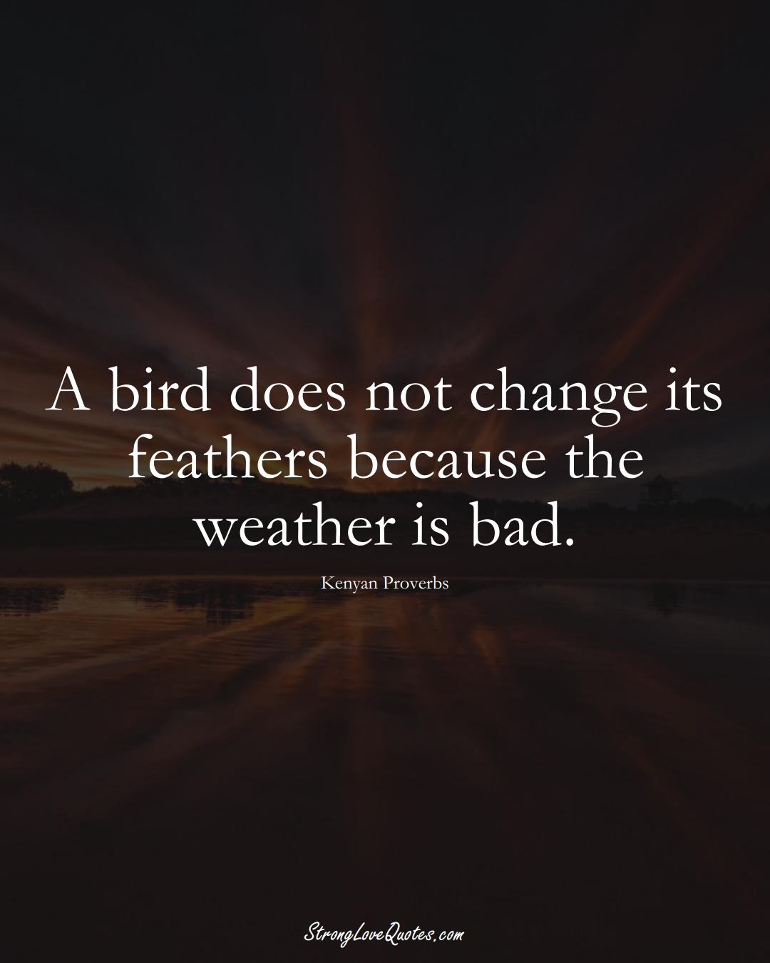 A bird does not change its feathers because the weather is bad. (Kenyan Sayings);  #AfricanSayings