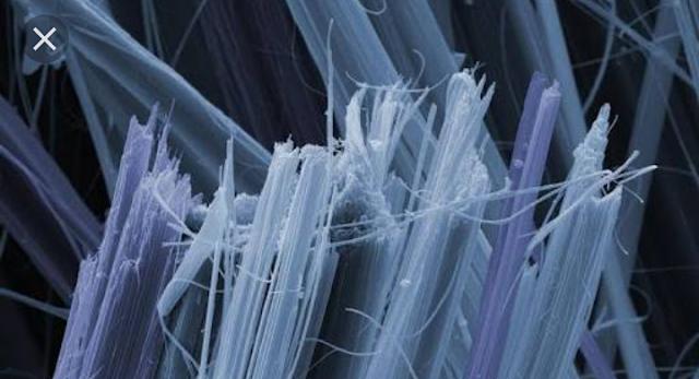 Asbestos fibrers