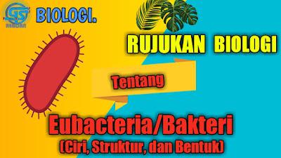 ciri eubacteria, struktur eubacteria,  bentuk eubacteria