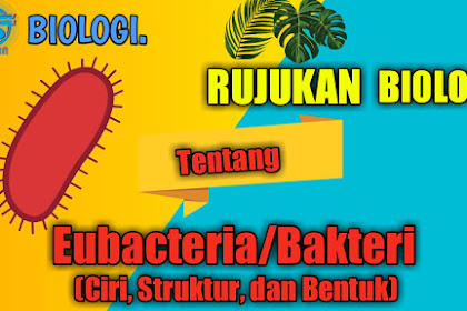 Rujukan Biologi tentang Eubacteria (Ciri, Struktur, dan Bentuk)