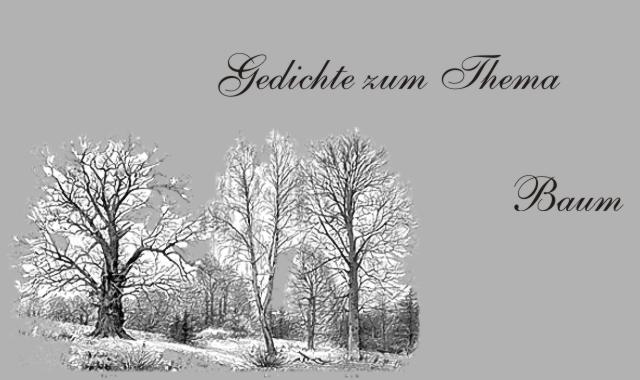 Gedichte Und Zitate Fur Alle Der Baum Im Spiegel Deutscher