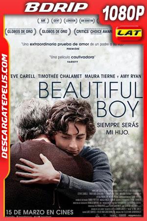 Beautiful Boy (2018) 1080p BDrip Latino – Ingles