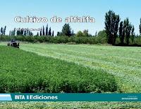 cultivo-de-alfalfa