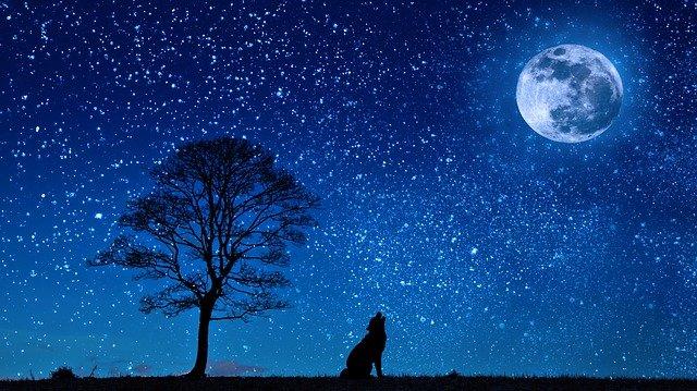 रात्रि पर कविताएं। Good night poems in hindi