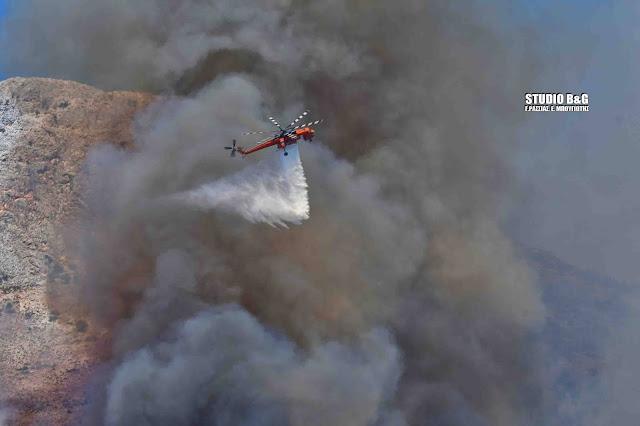 Καταστροφική η πυρκαγιά στις Μυκήνες (βίντεο)
