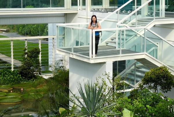 orto botanico-padova-architettura
