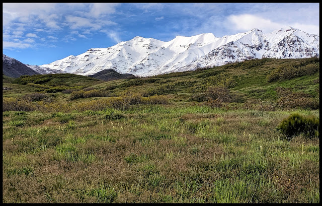 Beautiful Contrast of Fields of Green then Snow Covered Mount Timpanogas End of May 2019