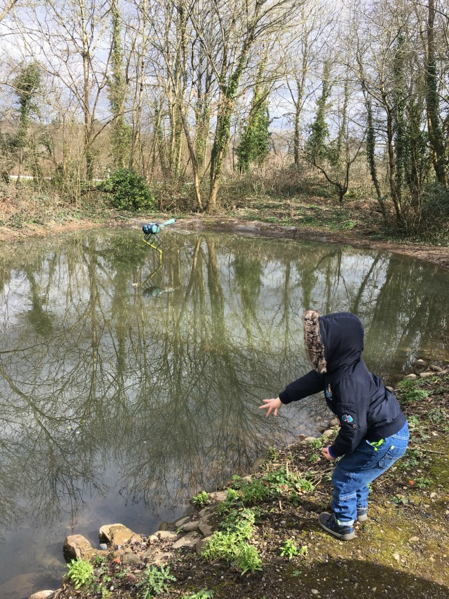 boy-throwing-stones-into-a-pond