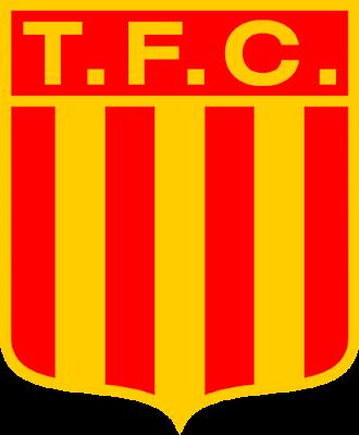 TALLERES FÚTBOL CLUB (MAR DEL PLATA)
