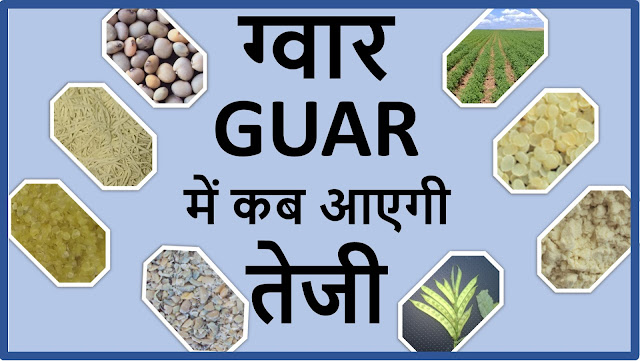 ग्वार व ग्वार गम के भावों की आगे क्या रहेगी चाल ? , Guar gum production, guar gum export and current price trend, guar, guar gum,  κόμμι γκουάρ Guargummi 瓜爾豆膠, Гуаровая камедь, Гуаровая камедь (гуаровая семян) культивирование консультирование в России, Кизельгура (Cyamopsis tetragonoloba) консультации по выращивание семян в России, Смоли іонообмінні (відповідно насіння) вирощування консультування в Україні, מסטיק Guar (Guar הזרע) ייעוץ הטיפוח בישראל, الاستشارات زراعة Guar اللثة (Guar البذور), صمغ گوار (دانه گوار) کشت مشاوره ايران, ग्वार, ग्वार आज के भाव, ग्वार के भाव, ग्वार गम, ग्वार गम का निर्यात, ग्वार गम का उत्पादन, ग्वार भाव, ग्वार रेट, 瓜尔豆胶 (瓜尔豆种子) 栽培顾问在中国   Guar, guar gum, guar price, guar gum price, guar demand, guar gum demand, guar seed production, guar seed stock, guar seed consumption, guar gum cultivation, guar gum cultivation in india, Guar gum farming, guar gum export from india , guar seed export, guar gum export, guar gum farming, guar gum cultivation consultancy, today guar price, today guar gum price, ग्वार, ग्वार गम, ग्वार मांग, ग्वार गम निर्यात 2018-2019, ग्वार गम निर्यात -2019, ग्वार उत्पादन, ग्वार कीमत, ग्वार गम मांग, Guar Gum, Guar seed, guar , guar gum, guar gum export from india, guar gum export to USA, guar demand USA, guar future price, guar future demand, guar production 2019, guar gum demand 2019.