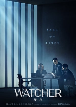 Watcher Korean Drama release, Cast, Plot Synopsis, Trailer