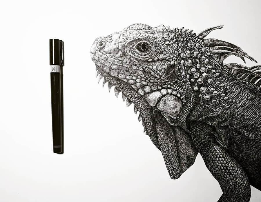 02-Lizard-Carole-Levy-www-designstack-co