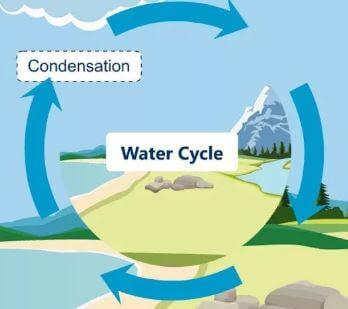 ما هي الدورة الهيدرولوجية؟