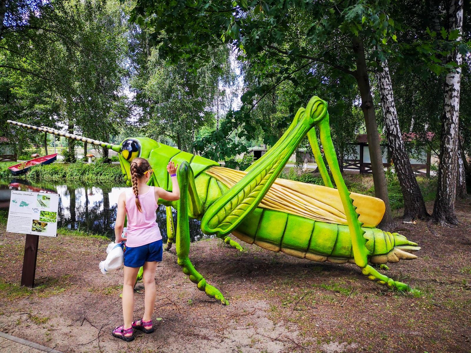 Ostrów Wielkopolski - atrakcje dla dzieci,  Rodzinny Park Przygód i Edukacji Górecznik