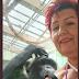 Após ter 'caso' com chimpanzé, mulher é proibida de entrar em zoológico na Bélgica