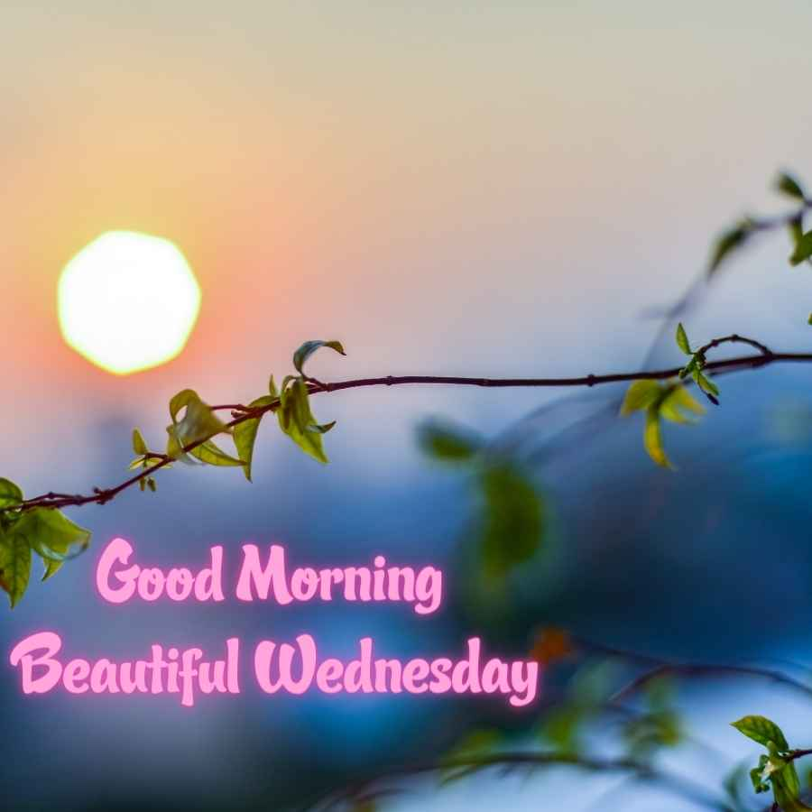 have a beautiful wednesday images