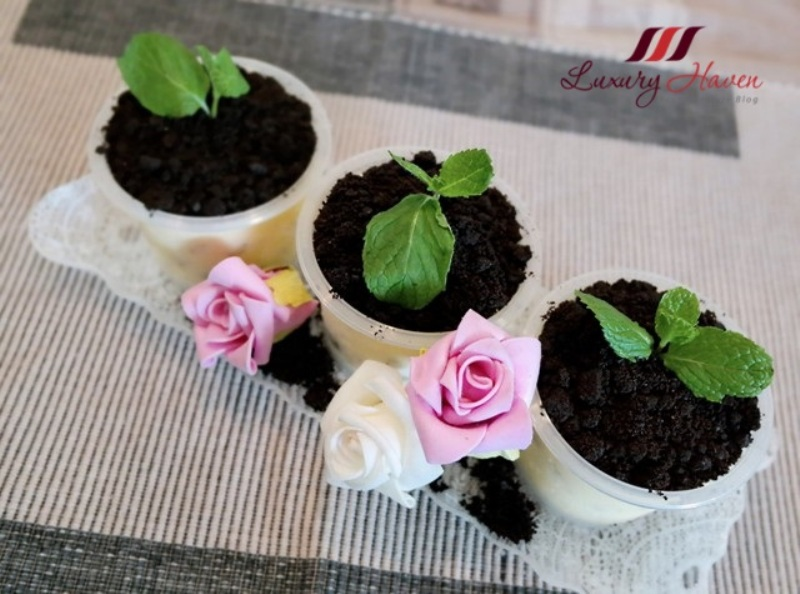 eye candy potted plant desserts party recipe