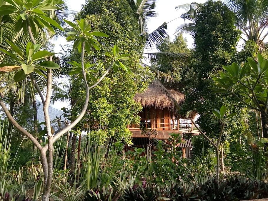 Best AirBnB in Bali, Most Unique AirBnB in Bali by www.calmctravels.com