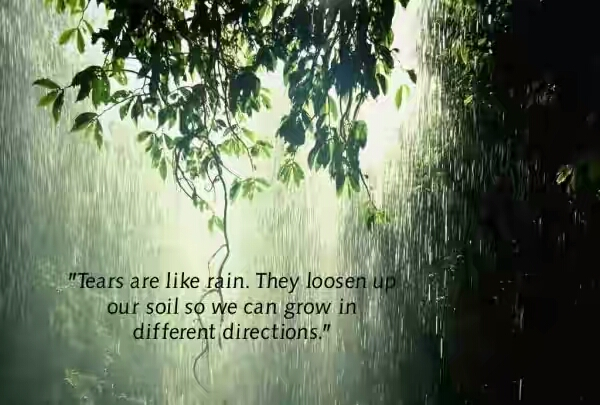 25 Happy Rain Quotes