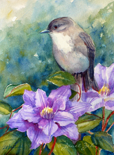A phoebe sits on a post among clematis flowers