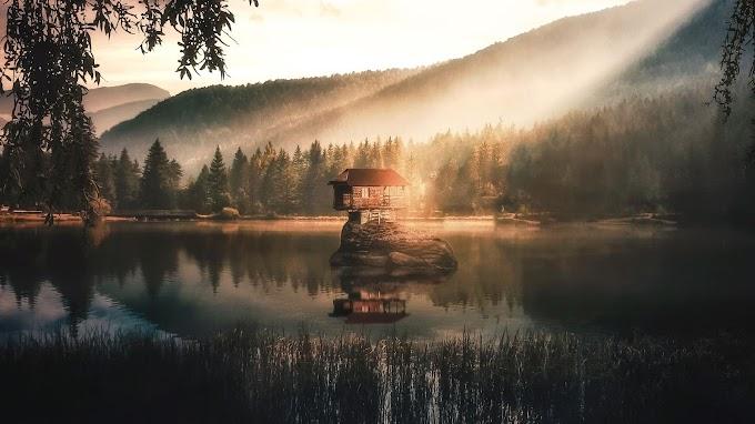 Casa, Ilha, Lago, Floresta, Nevoeiro