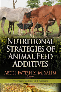 Nutritional Strategies of Animal Feed Additives