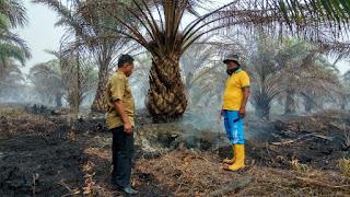 Petani Minta Pemerintah Selesaikan Masalah Kebakaran Lahan Gambut