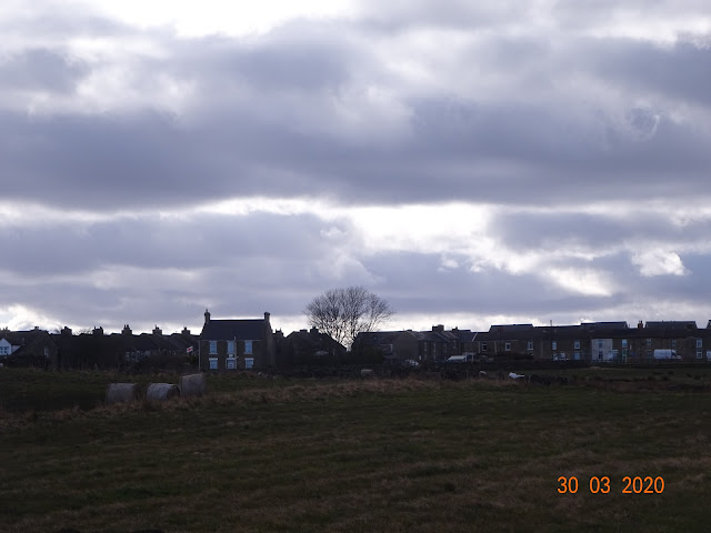 Yettanother Local Walk - Stanley Moss