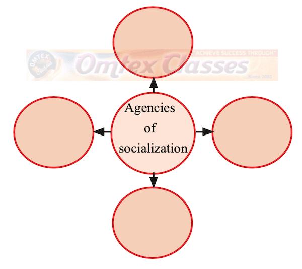 Chapter 6 - Socialization Balbharati solutions for Sociology 11th Standard Maharashtra State Board