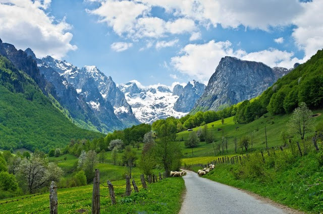 Danas 30 godina od proglašenja Crne Gore za ekološku državu