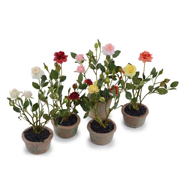 Розы миниатюрные Минск купить
