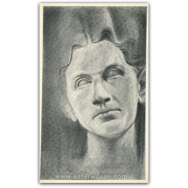 Roman sculpture drawing pencil on paper