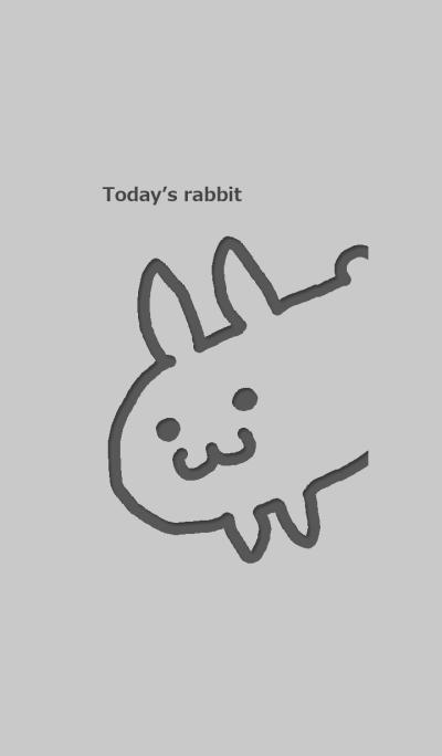 Today is rabbit