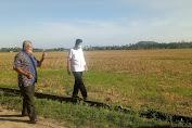 Azhar Arsyad Tinjau Saluran Irigasi Petani Di Pinrang, Ini Tujuannya