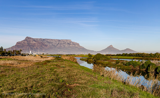 Table Mountain View From the Table Bay Nature Reserve Woodbridge Island Milnerton Photo Vernon Chalmers