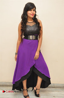 Telugu Actress Rachana Smith Stills at Money is Honey Audio Release  0088.jpg