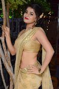 Yamini Bhaskar sizzling in saree-thumbnail-2