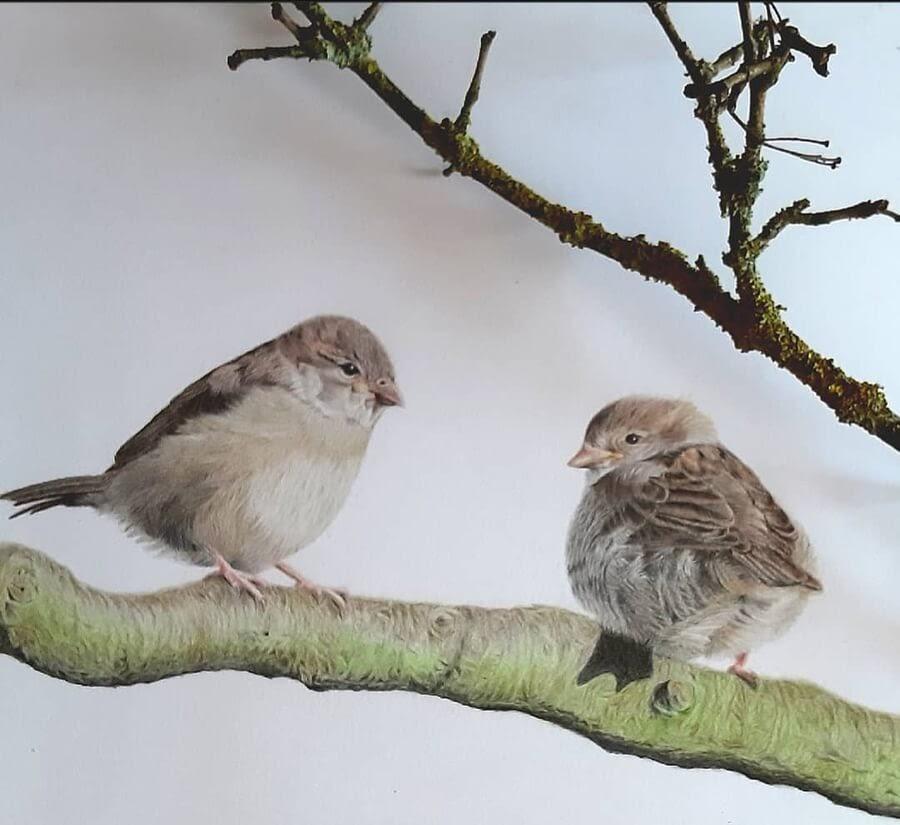04-Little-birds-chirping-away-Bianca-Buer-www-designstack-co