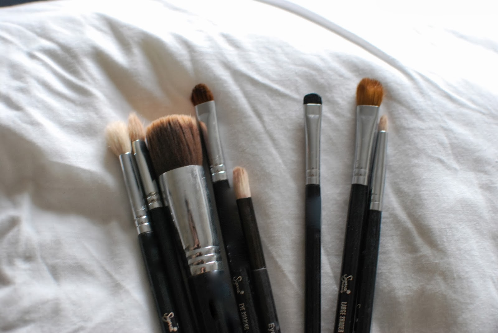 how to clean brushes after nits