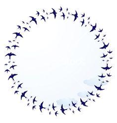 Âm mùa chim mới - Chim yến bay vòng.