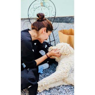 Bollywood News | Bollywood News |Bollywood news| Anushka Sharma will open Hospital and Shelter Home for animals |